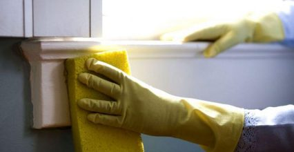 Do You Know How To Identify The Presence Of Mould In Your House?