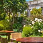 Easy Ways to Make Your Garden More Private